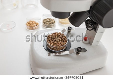 Chemical Laboratory of the Food supply . Food in laboratory, dna modify .Toning image - stock photo