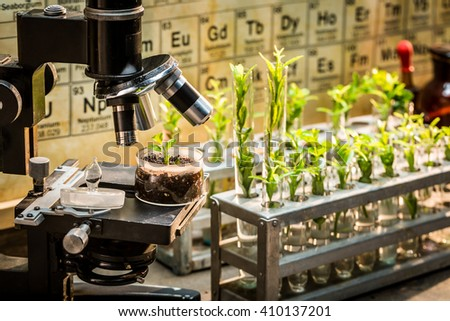 Chemical laboratory with microscope and plants - stock photo