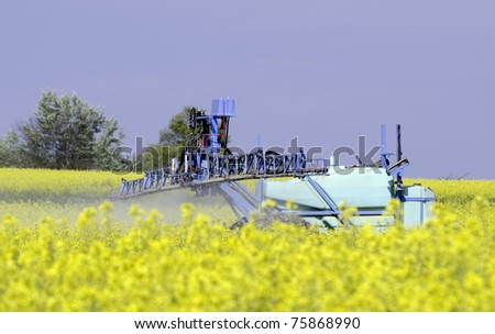 chemical treatment of rapeseed - stock photo