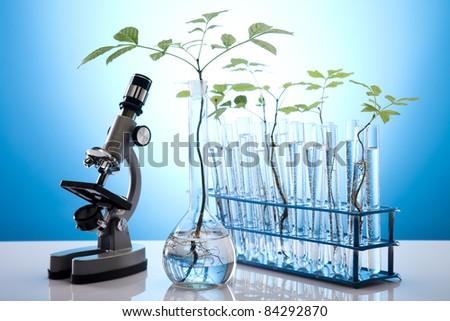 Chemistry equipment, plants laboratory glassware - stock photo