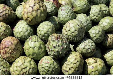 Cherimoya fruits - stock photo