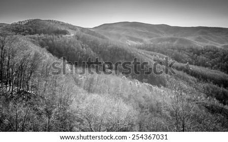 Cherohala Skyway Mountains - (B&W Filter Applied) - stock photo