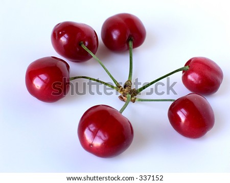 cherries cluster - stock photo