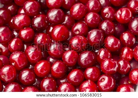 cherries / fresh shiny cherries - stock photo