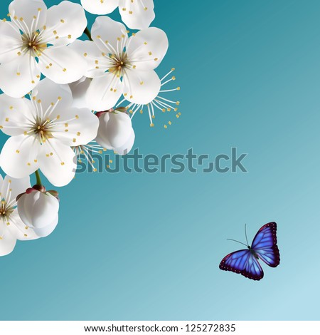Cherry Blossom And Blue Butterfly. Raster Version. - stock photo
