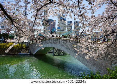cherry blossom and bridge - Japanese Garden Cherry Blossom Bridge