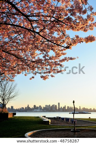 Cherry Blossom and Downtown Vancouver - stock photo