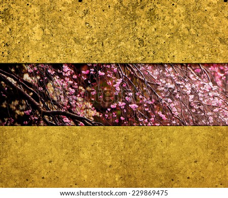 Cherry blossom and gold wall abstract background. Oriental cherry blossom background. - stock photo