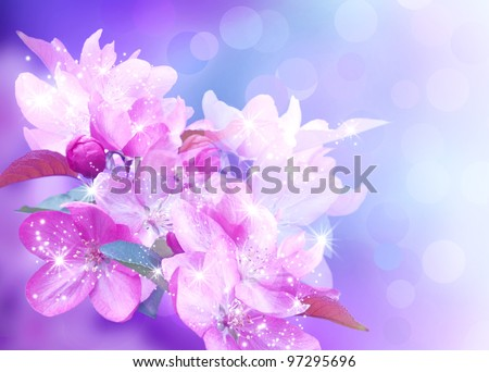 Cherry blossom and shine stars - stock photo