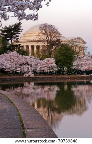 Cherry blossom around Tidal Basin with Jefferson Memorial, Washington DC - stock photo