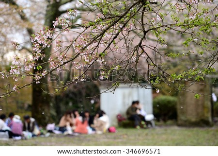 Cherry Blossom during Hanami Festival in Yoshino, Nara Prefecture, Kansai, Japan, is part of a UNESCO World Heritage site known as Sacred Sites and Pilgrimage Routes in the Kii Mountain Range. - stock photo