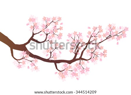 Cherry blossom pink icon