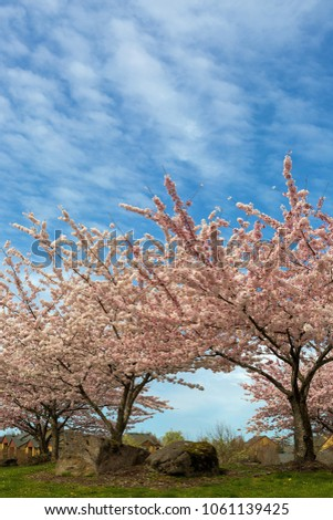 Jpl Designs S Portfolio On Shutterstock