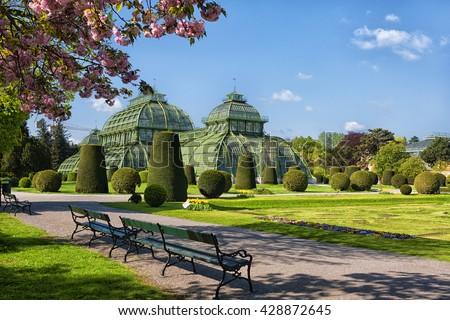 Cherry blossoms and palm house, Vienna, Austria - stock photo