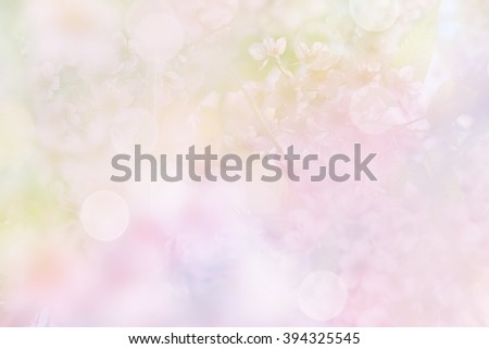 Cherry blossoms in soft multicolor made blur style and bokeh for background - stock photo