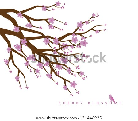 Cherry blossoms. JPG - stock photo