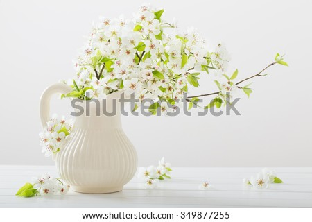 cherry flowers on white background - stock photo