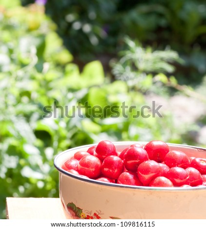 Cherry in the dish on table in garden - stock photo