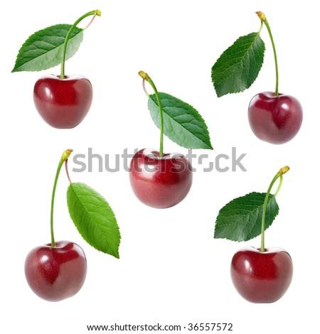 Cherry set. - stock photo