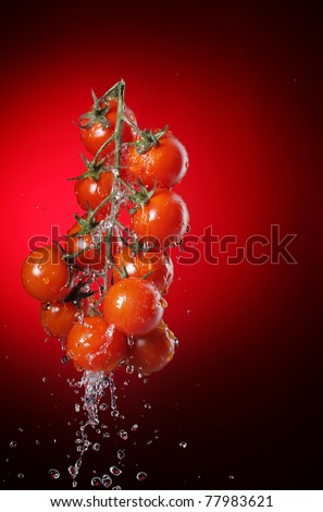 cherry tomato in water splash - stock photo