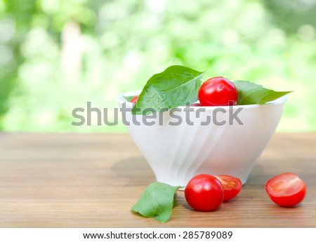 cherry tomatoes, basil and mozzarella cheese on a plate - stock photo