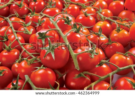 Cherry tomatoes isolated on white background vegetable