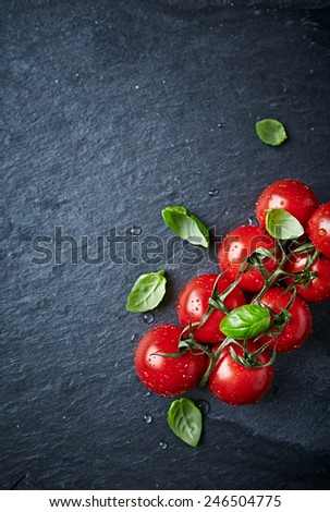 Cherry tomatoes on the vine with basil leaves - stock photo