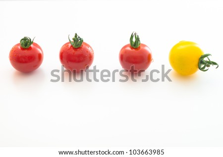 Cherry Tomatoes Series (3 red& 1 yellow) - stock photo