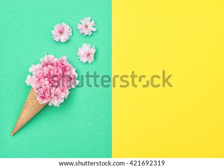 Cherry tree blossom in ice cream cone on colored background. Spring flowers. Stylish flat lay. Minimal concept. Flat lay background - stock photo