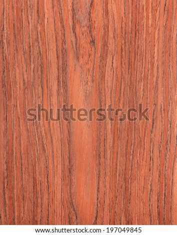 cherry wood texture,  natural rural tree background - stock photo