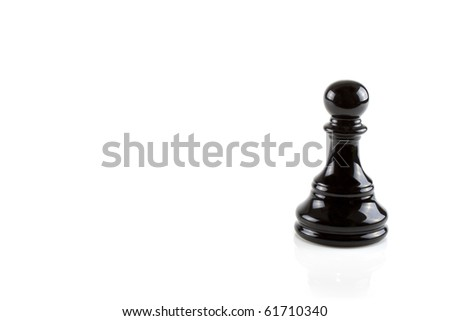 Chess piece isolated on a white background - stock photo