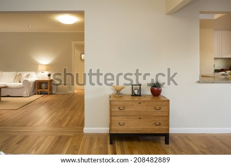 Chest in living room - stock photo