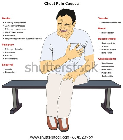 Musculoskeletal Stock Images, Royalty-Free Images ...