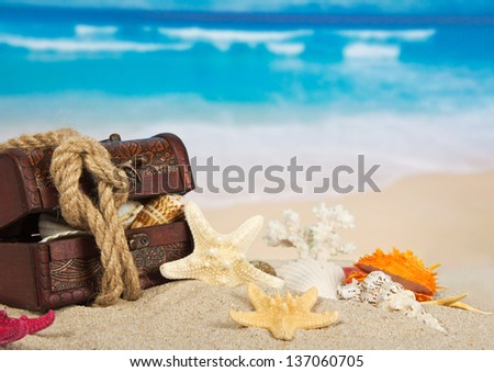 Chest with the cockleshells, closed by a rope on the coast - stock photo