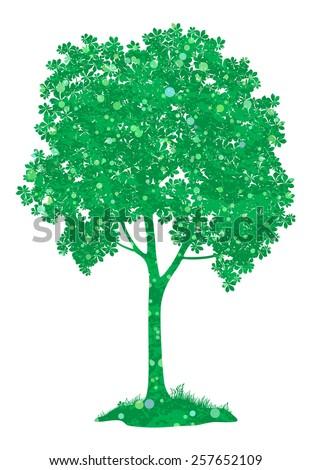 Chestnut green tree, isolated on white background. - stock photo