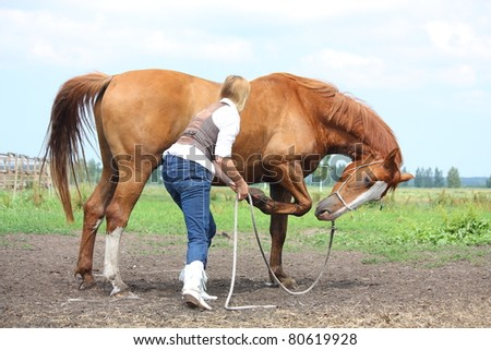 Chestnut horse bowing on command from young blonde woman