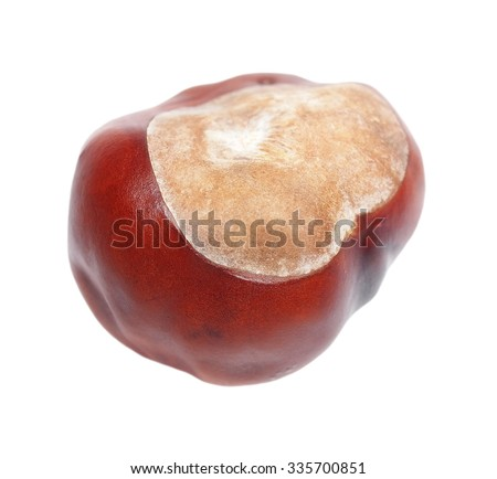 chestnut isolated on white background, sweet edible chestnuts - stock photo
