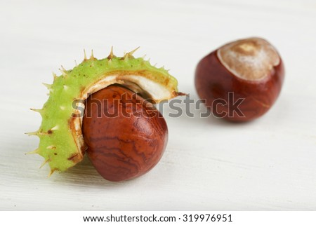 chestnut on a white  wooden background