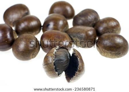 Chestnut on white background - stock photo