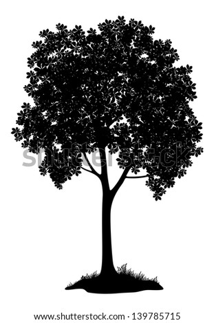 Chestnut tree, black silhouette on white background. - stock photo