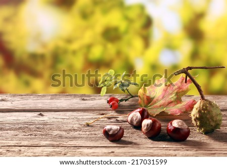 Chestnuts and rose hips, both rich natural sources of vitamin c , standing on an old wooden table in an autumn garden with colorful golden yellow foliage, with copyspace - stock photo