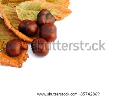 chestnuts and yellow leaves, autumn items
