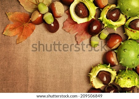 chestnuts autumn frame background - stock photo