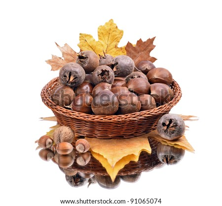 Chestnuts (Castanea Sativa) in a bowl, Medlar fruit  , walnut, chestnut, autumn leaves, close-up on a white background, a reflection - stock photo