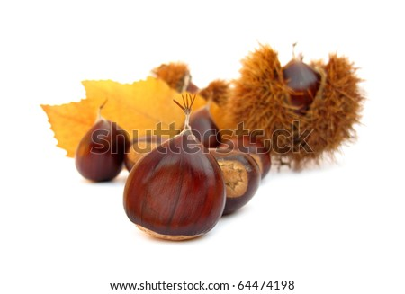 Chestnuts edible nuts on white - stock photo