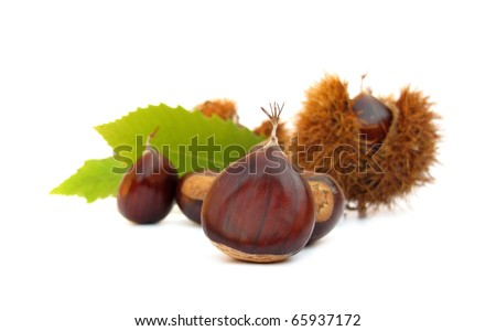 Chestnuts edible nuts on white