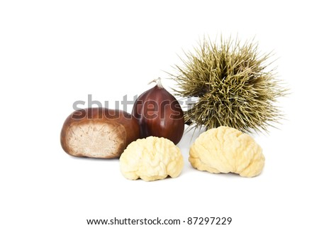 chestnuts fall season isolated on white background - stock photo