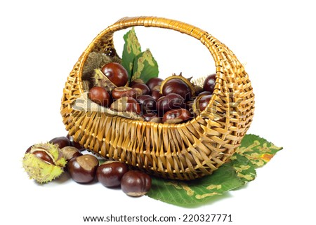 Chestnuts in Wicker Basket on Green Leaves Isolated on White Background - stock photo