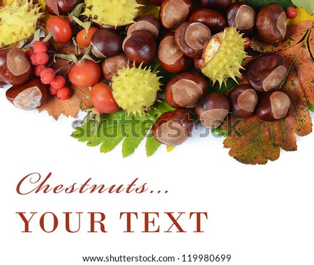 Chestnuts on autumn leaves isolated on white - stock photo