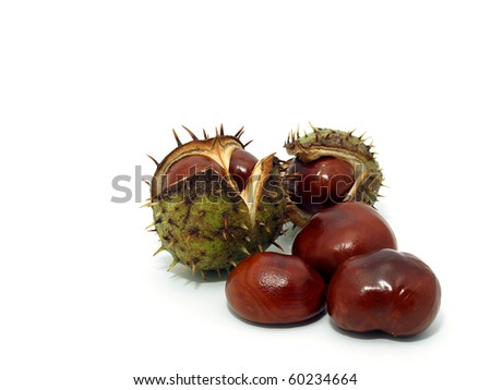 Chestnuts on the white background